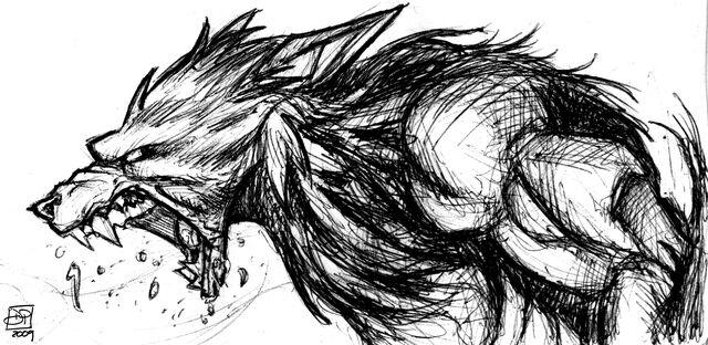 File:Werewolf Sketch by Kenpudiosaki.jpg