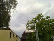 Bild 13 Beginn Stuthirtenweg