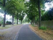 Bild 5 Finkenkruger Weg