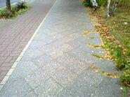 Bild 6 Klemkestraße Gehweg