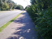 Bild 2 Fahrradweg Ruppiner Straße