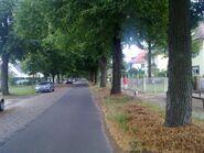 Bild 3 Straße Finkenkruger Weg