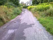 Bild 14 Stuthirtenweg