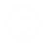 Aspect Swap perk icon.png