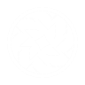 Arc Armor perk icon.png
