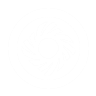 Aumentar fuerza perk icon.png