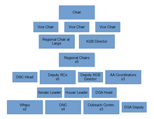 POWER V Democratic Party Structure