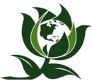 Green Party (USA)