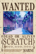 ScratchBedinaBounty