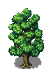 File:Elder Tree.png