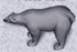 Polarbearicon