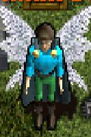 Bo'Kor Wings