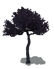 File:Black Tree.png