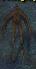Harpyicon