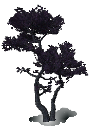 File:Strong Black Tree.png