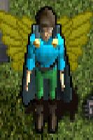 Y No'Kor Wings