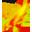 Ancientfire Sword icon