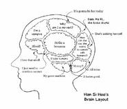 Han hi soo brain