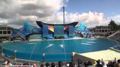Video One Ocean Full Show Seaworld San Diego Orca
