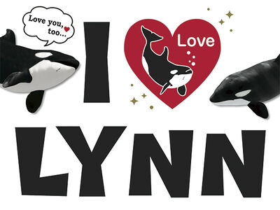 Lynn 7757