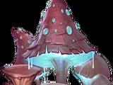 Spore Mushrooms