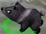Dark Bear Cub