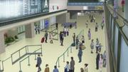 Narita airport arrival
