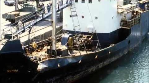 "W5 - Modern pirate seeks to protect world's sea life ""Watson's War"""