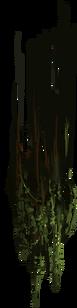 ForestVinesE