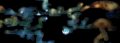 Bash map.png