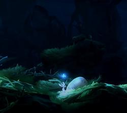 Kuro's Nest