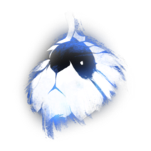 Tuley map icon