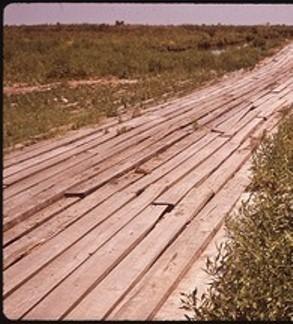 Plank 0