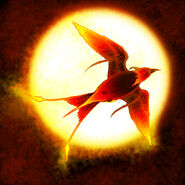 Orlandian-Pyrebird