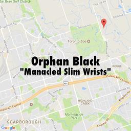 Orphan Black 5x06