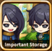 Important storage