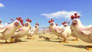 Chickensaremad