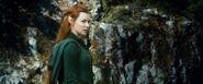 HobbitSmaug 078