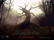 SleepyHollow 012
