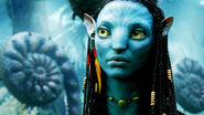 Avatar 008