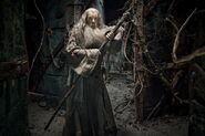 HobbitSmaug 042