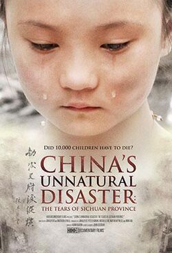 China's Unnatural Disaster