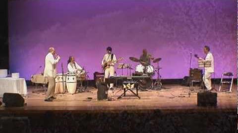 Cherry Blossoms - From Healing Concert - Osaka, Japan - April 10 2010