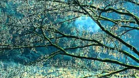Peace(Go Slowly) - Morgan Fisher