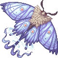 Glacienne moth zenith