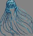Hellspawn jelly adult
