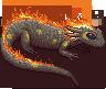 Salamander adult