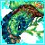 Avatar haven turtle