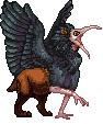 Waldbush Gryphon adult