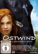Ostwind - Zusammen sind wir frei (Film)